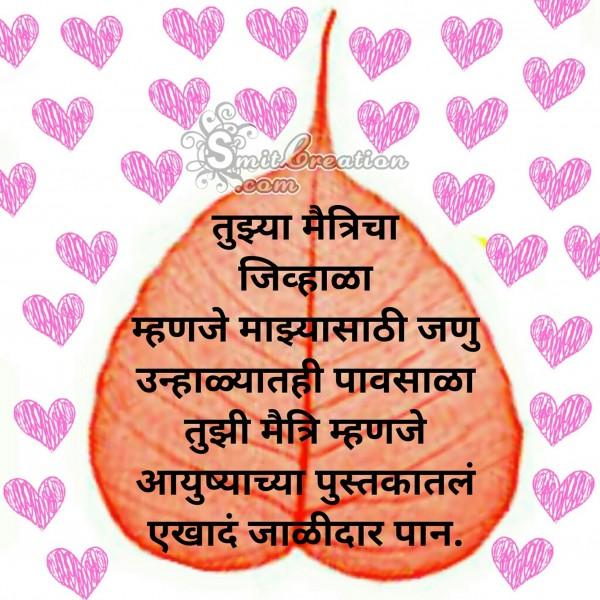 Tuzi Maitri Mahnje Aayushyatla Pustakatala Jalidar Pan