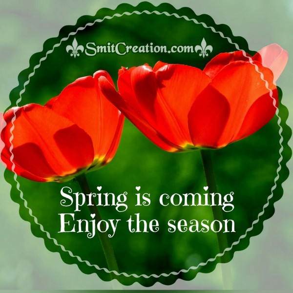 Spring Is Coming Enjoy The Season