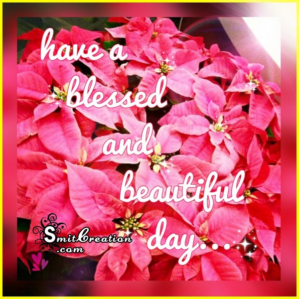 Have a blessed and beautiful day