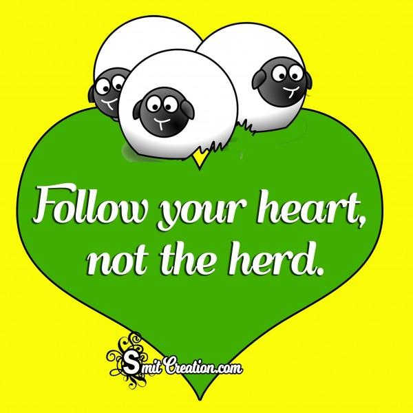 Follow Your Heart not the herd.