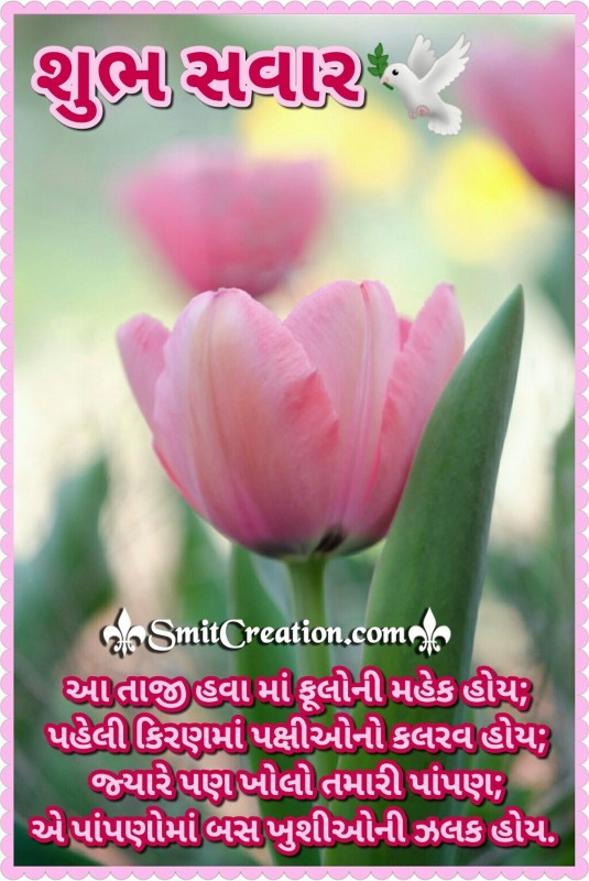 Shubh Savar Gujarati Shayari