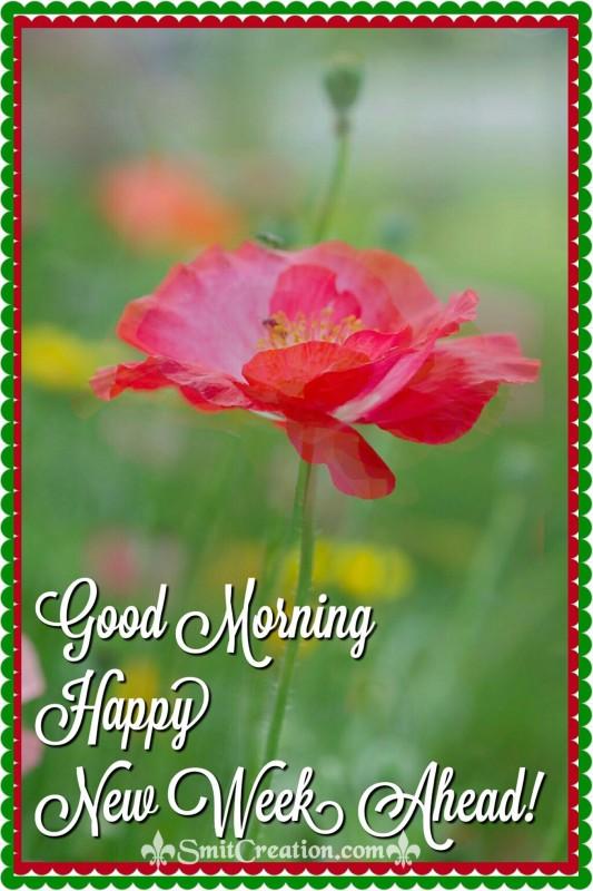 Good Morning Happy New Week Ahead