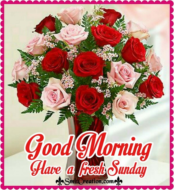 Good Morning Have a fresh Sunday