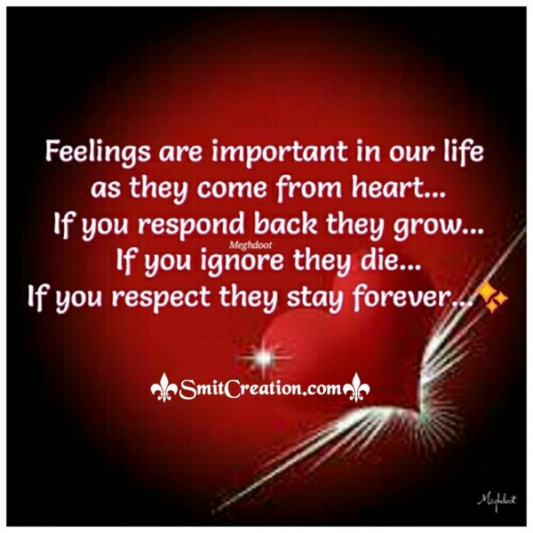 Feelings Are Important In Our Life