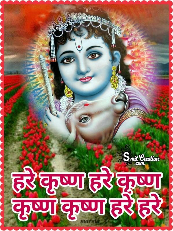Hare Krishna Hare Krishna Krishna Krishna Hare Hare
