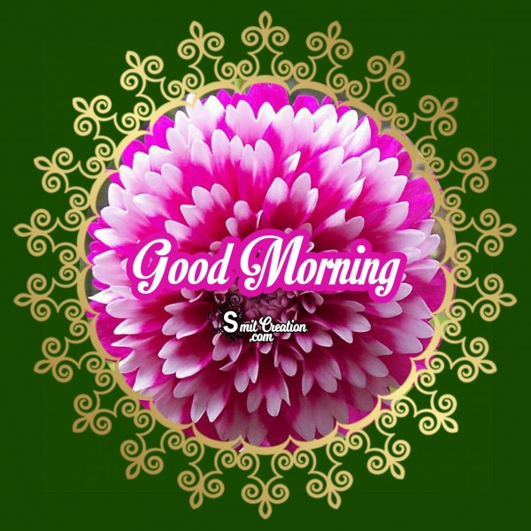Good Morning Beautiful Flower Image