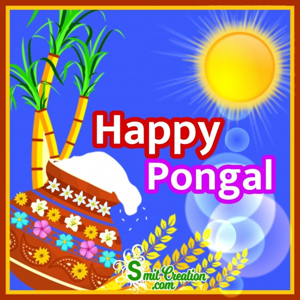 Happy pongal