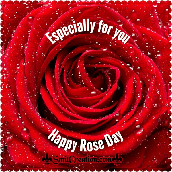Especially For You – Happy Rose Day