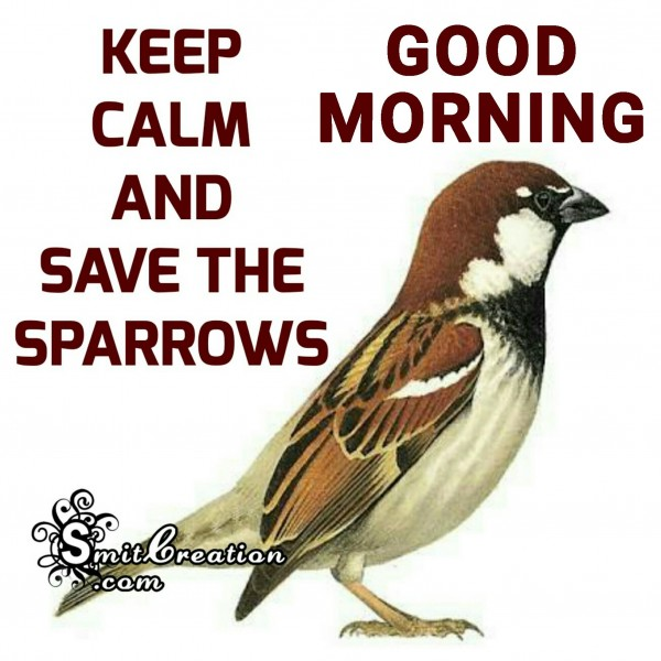 Good Morning – Keep Calm And Save The Sparrows