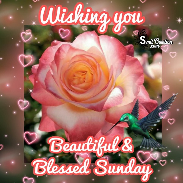 Wishing You Beautiful & Blessed Sunday