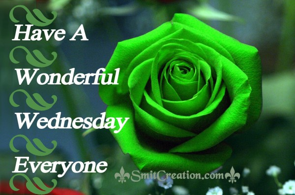 Have A Wonderful Wednesday Everyone