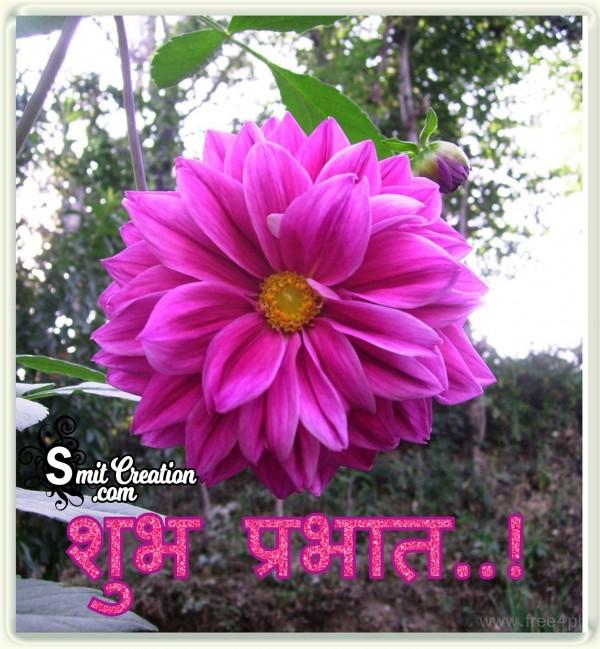 Shubh Prabhat Flower Image
