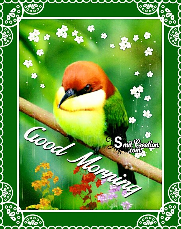 Good Morning Wishes With Green Bird Image