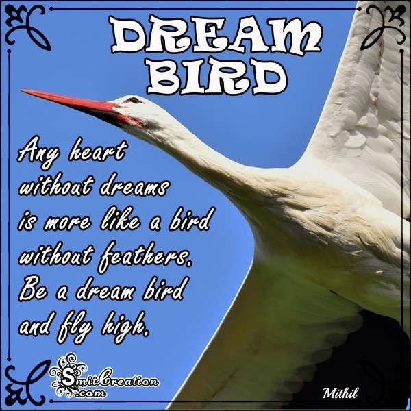 Be A Dream Bird And Fly High