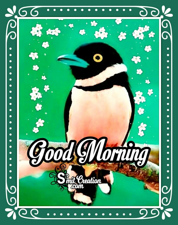 Good Morning Wishes With Bird Image