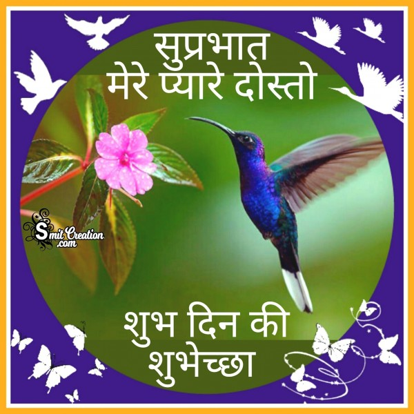 Shubh Prabhat Birds