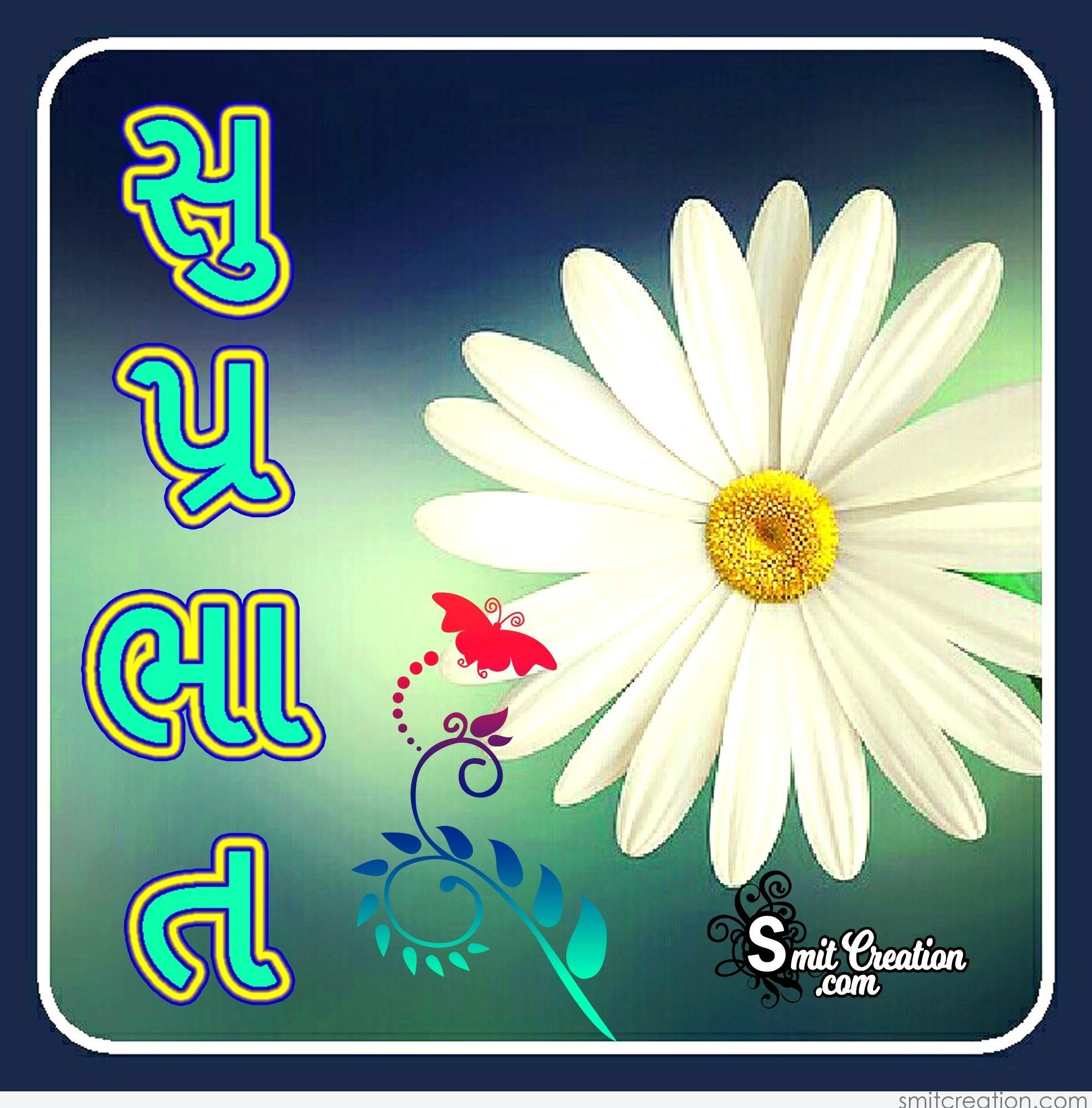 Shubh Savar Gujarati (  ) Pictures and