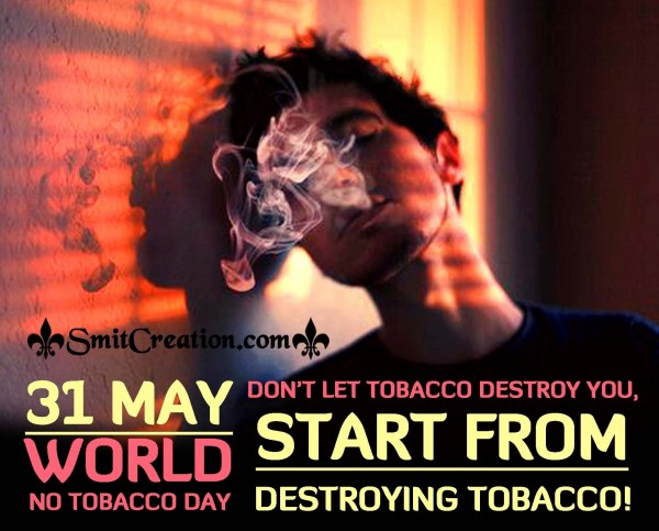 31 May World No Tobacco Day – Start From Destroying Tobacco!