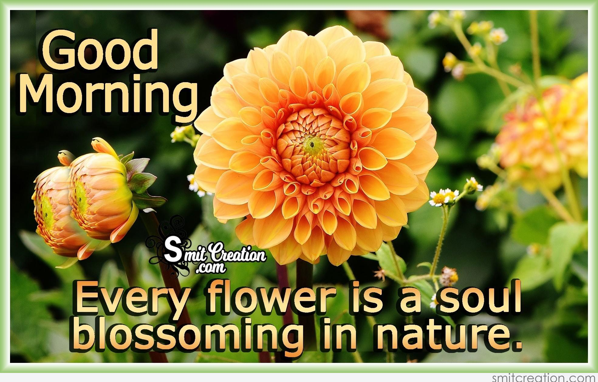 Good Morning Flowers Images With Quote Smitcreation Com