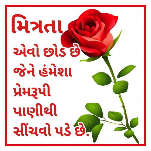 Mitrata Avo Chhod Chhe Jene Ptrmrupi Panithi Sinchvo Pade