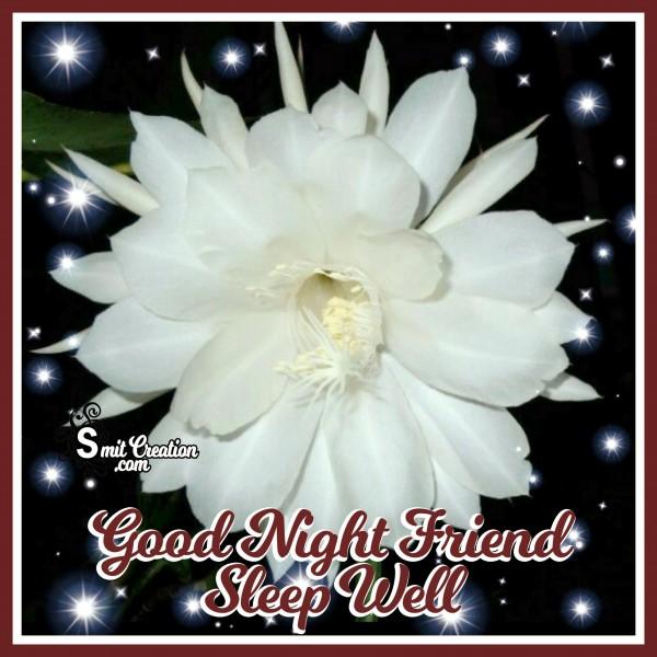 Good Night Friend Sleep Well