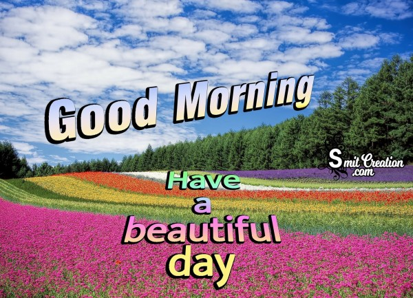 Good Morning Have A Beautiful Day