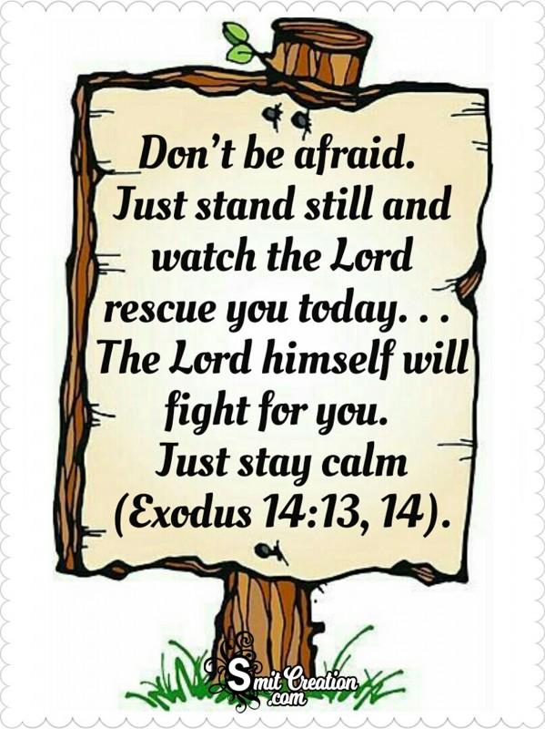 Bible Verses – Don't Be Afraid