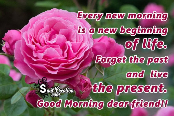 Every New Morning Is A New Beginning Of Life.