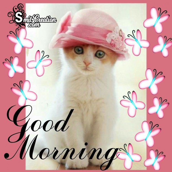 Good Morning Pussy Cat