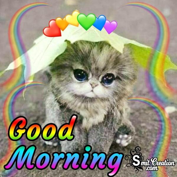Good Morning Kitten Picture