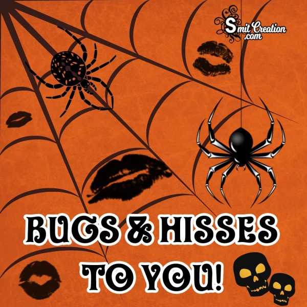 Bugs & Hisses To You!