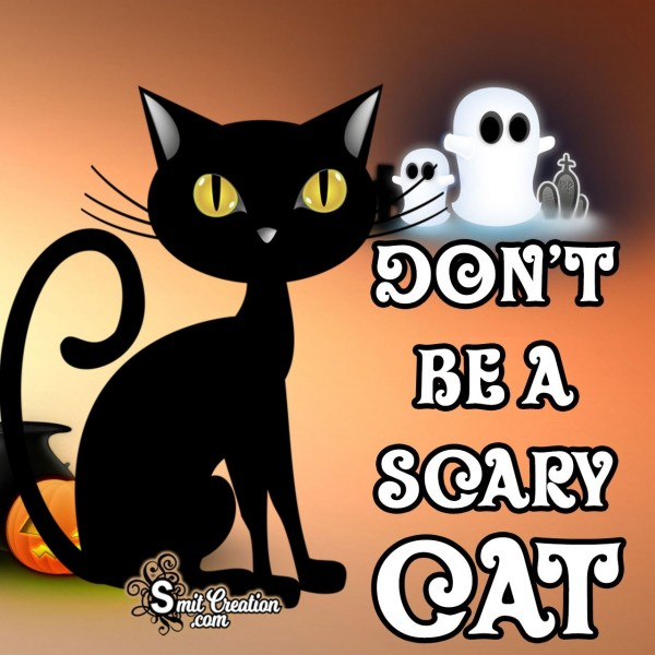 Don't Be A Scary Cat