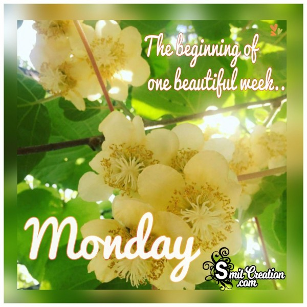 Monday The Begining Of One Beautiful Week