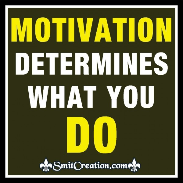 Motivation Determines What You Do