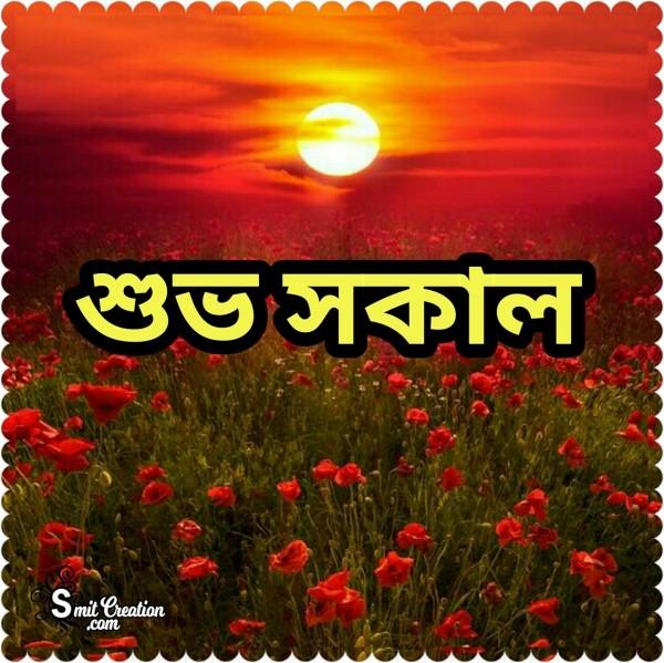 Shuvo Sokal