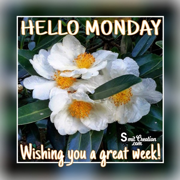 Hello Monday – Wishing You A Great Week