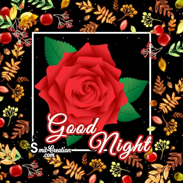 Good Night Beutiful Rose