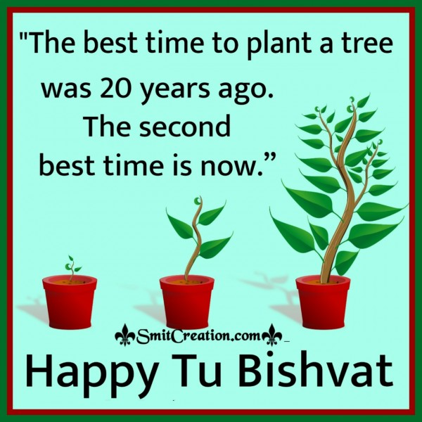 Plant A Tree On Tu Bishvat
