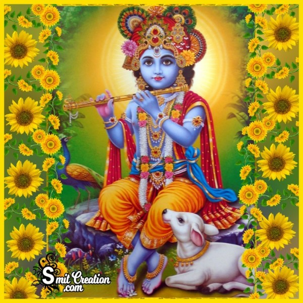 Bal Krishna With Cow And Sunflower