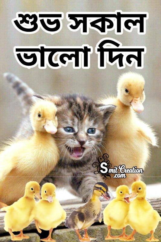 Shubho Sokal Bhalo Din Chabi