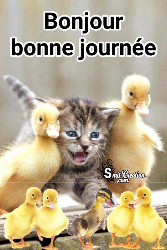 Bonjour Bonne Journee Image