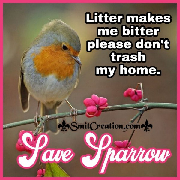Save Sparrow From Litter