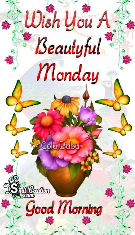 Wish You A Beautiful Monday
