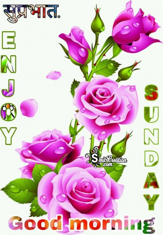 Good Morning Enjoy Sunday