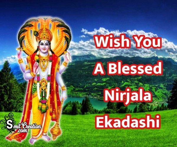 Wish You A Blessed Nirjala Ekadashi