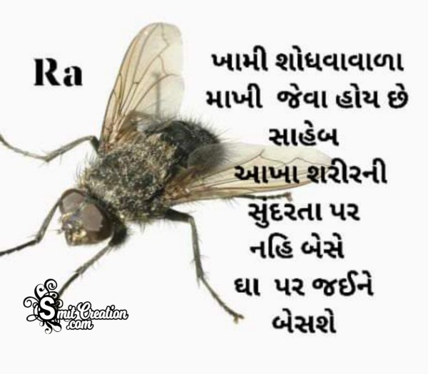 Gujarati Suvichar For WhatsApp