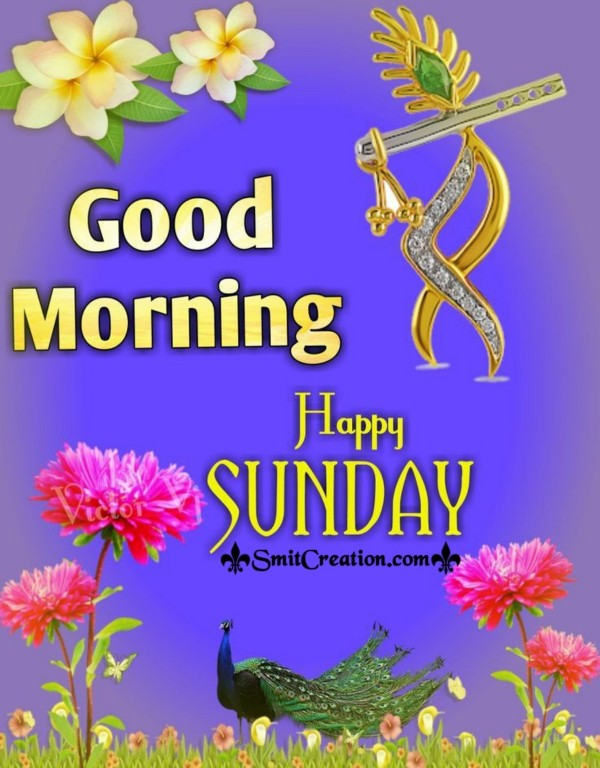 Good Morning Happy Sunday Pic