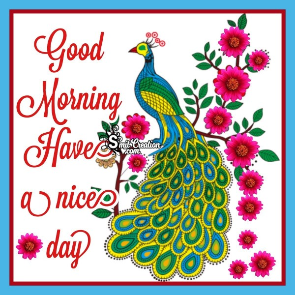 Good Morning Colourful Birds Pictures