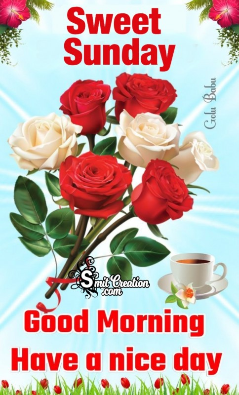 Good Morning Sweet Sunday Roses