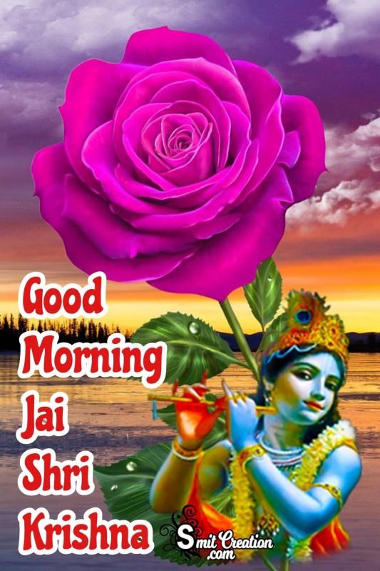 Good Morning Jai Shri Krishna With Pink Rose